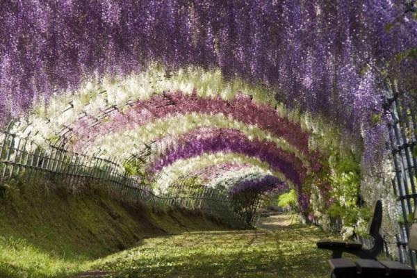 Необыкновенные тоннели, созданные природой