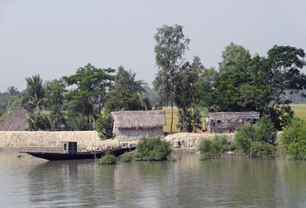 Мангровый лес Сундарбан, Бангладеш