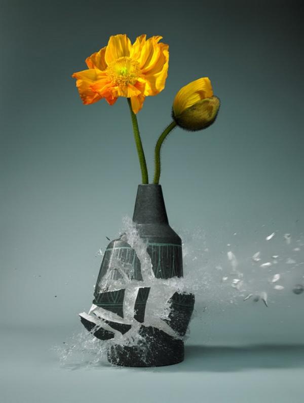 Вазы с цветами Martin Klimas
