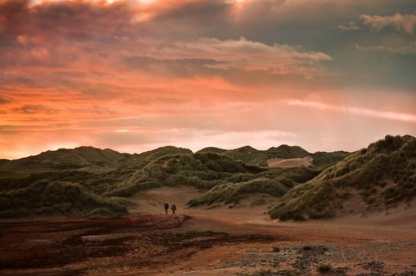 Романтичные зрелищные пейзажи Элизабет Гэдд