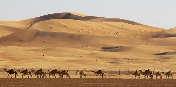 Десять самых жарких мест планеты